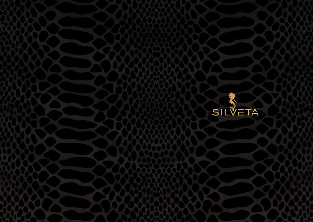 silveta_2017